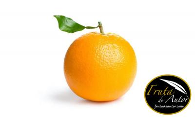 PMM_WEB_Contingut-TF_Naranja